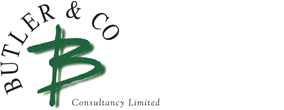 Butler & Co Consultancy logo